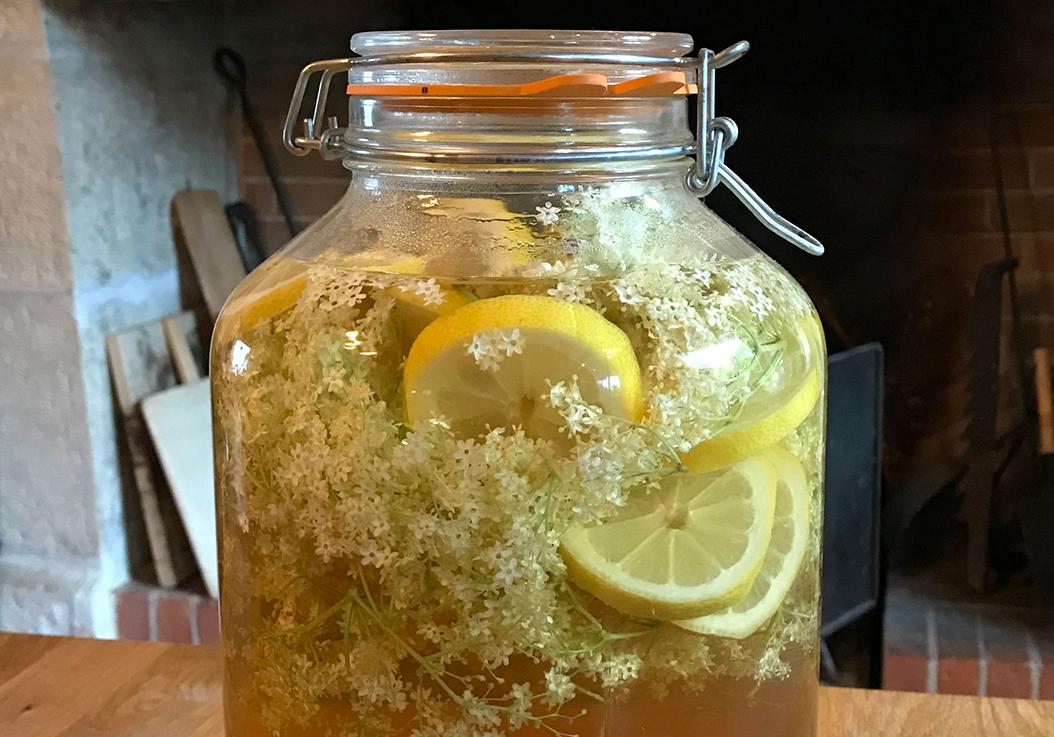 Recette de limonade de sureau maison